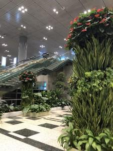 летище Changi